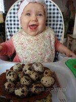 Можно ли кушать яйца детям до года?