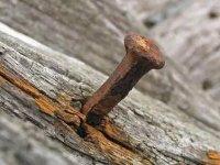 Чем опасен ржавый гвоздь, попавший в ногу